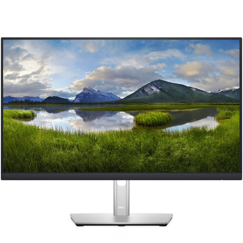 Dell P2422H  product