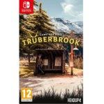 Truberbrook, за Nintendo Switch image