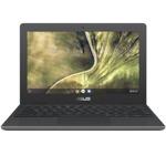 Asus Chromebook C204EE-GJ0219