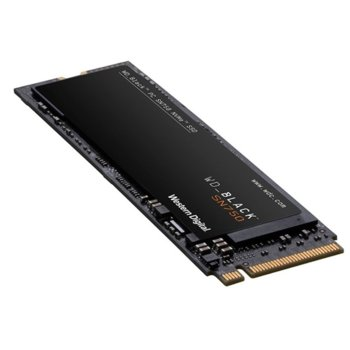 SSDWDBLACKWDS250G3X0C
