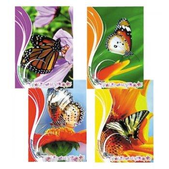 Тетрадка Blasetti, формат A4, офсетова хартия широки редове, 42 листа image