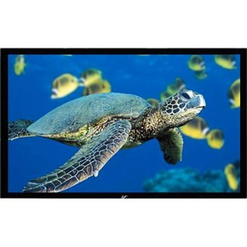 Elite Screen R100WH1 product