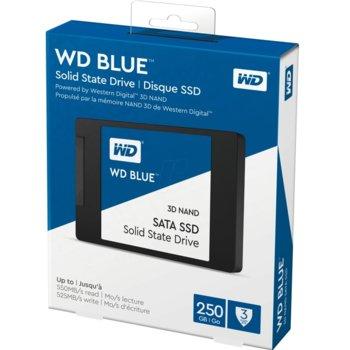 SSDWDWDS250G2B0A
