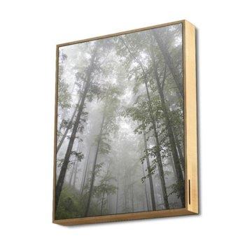 Аудио картина Energy Sistem Forest, 2.1, 50W, Bluetooth, MicroSD, до 20 часа живот на батерията, дървена рамка image