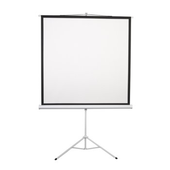 "Екран Lumi, на стойка, 172 x 172 cm, 96"" (243.84 cm); 1:1 image"