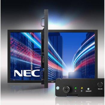 MNSPNEC60003395