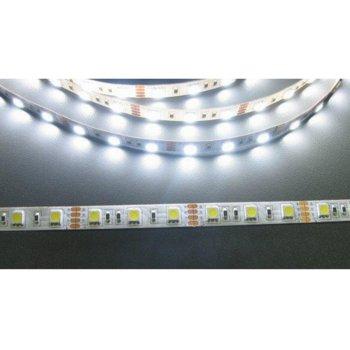 LED лента FS5050-60CW, 14.4W/m, DC 12V, бяла, 1m image