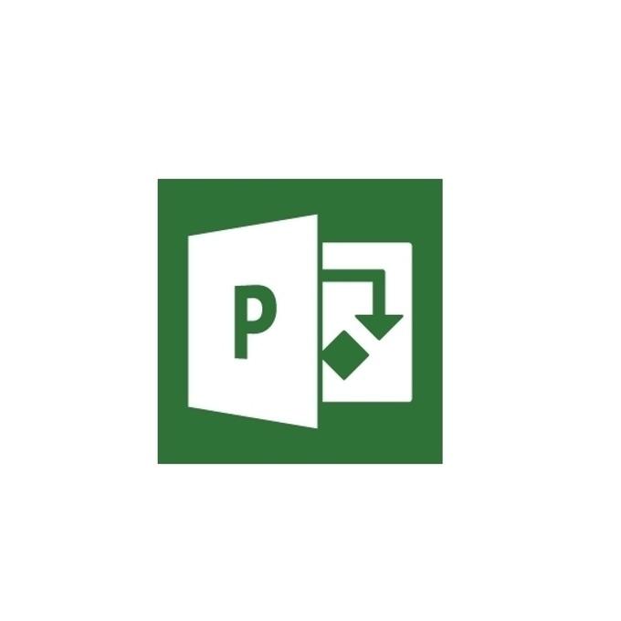 Microsoft Project Server 2019, Single OPEN 1 License, No Level, поименен лиценз image