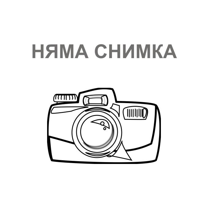 "ZTE Axon 7 (сив), поддържа 2 sim карти, 5.5"" (13.97 cm) WQHD Amoled дисплей, четириядрен Snapdragon 820 2.15GHz (2x2.15 GHz Kryo & 2x1.6 GHz Kryo), 4GB RAM, 64GB Flash памет(+microSD слот), 20.0 & 8.0 Mpix camera, Android, USB Type C, 175g image"